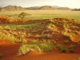 Semi Arid Desert towards the South of Namibia