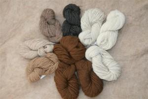 Alpaca Sport yarn 2012