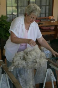 Alpaca Fleece Sorting