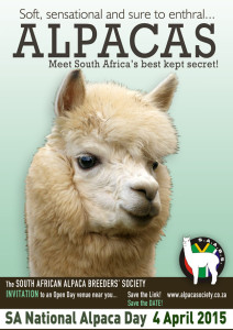 Our MUKUTI Stud team will be at the Helderstroom Alpaca Farm outside Villiersdorp, Western Cape, on Saturday SUNDAY, 5th APRIL 2015, due to a special request, we will be at Willowbrook Alpacas, Ohio Farm, Noordhoek, Western Cape. Come and see the wonderful alpacas, browse through our products and what's on offer, meet the people who care for and nurture these wonderful animals